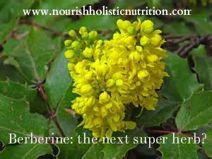 Berberine the next super herb