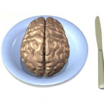 What should you feed your brain?