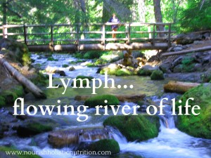 Lymph river