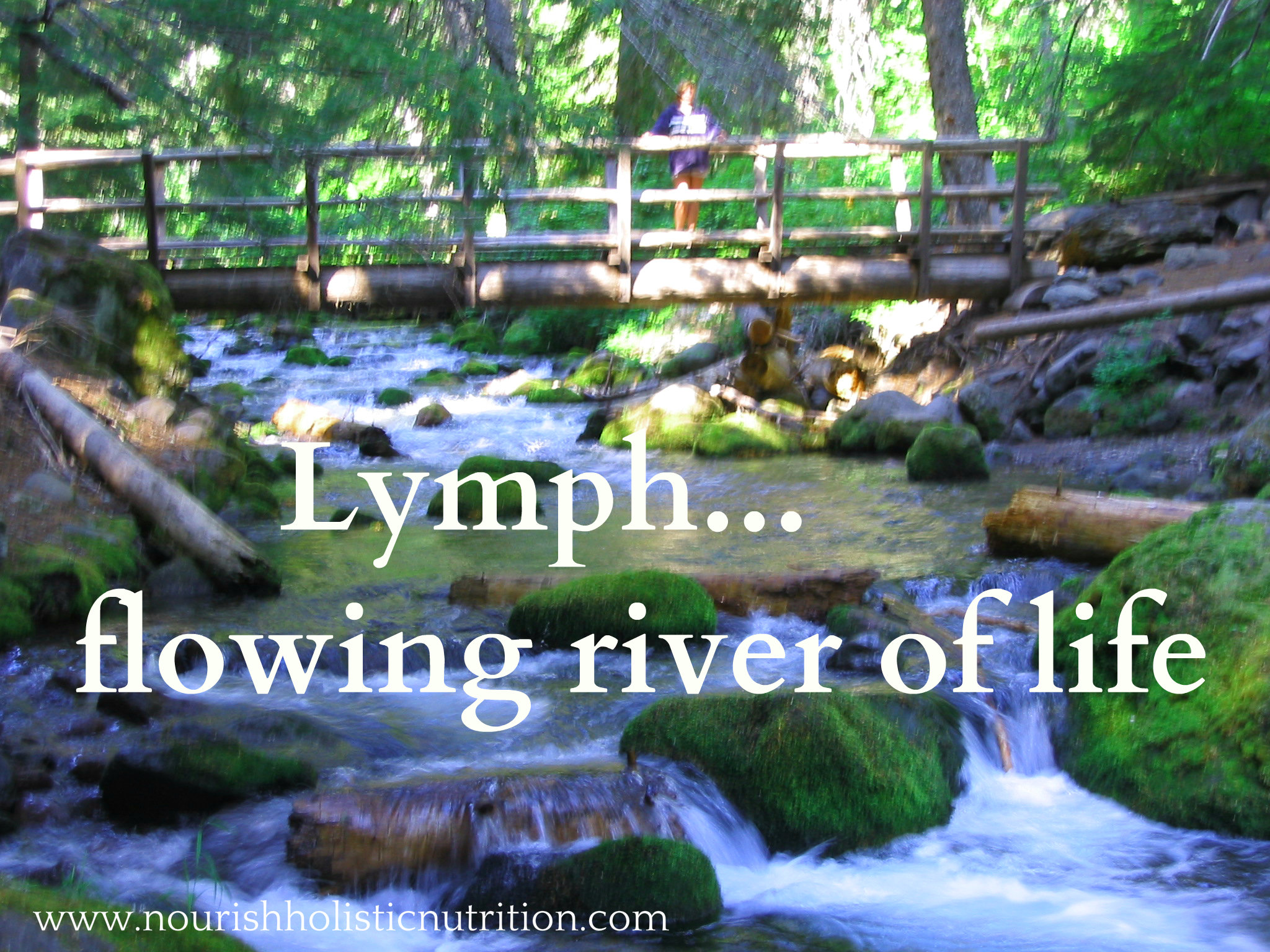 Lymph Flowing River Of Life Nourish Holistic Nutrition